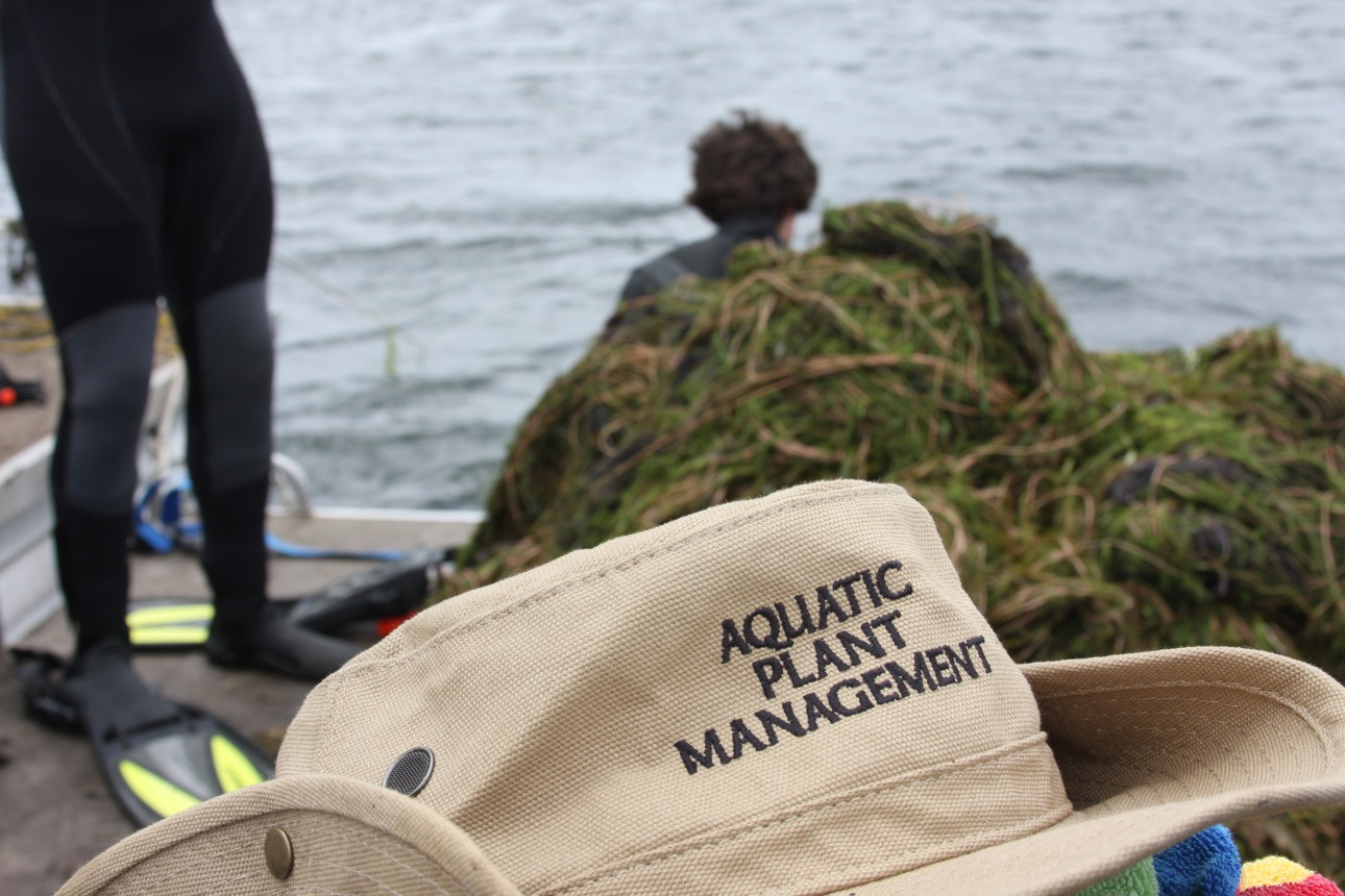 About Aquatic Plant Management