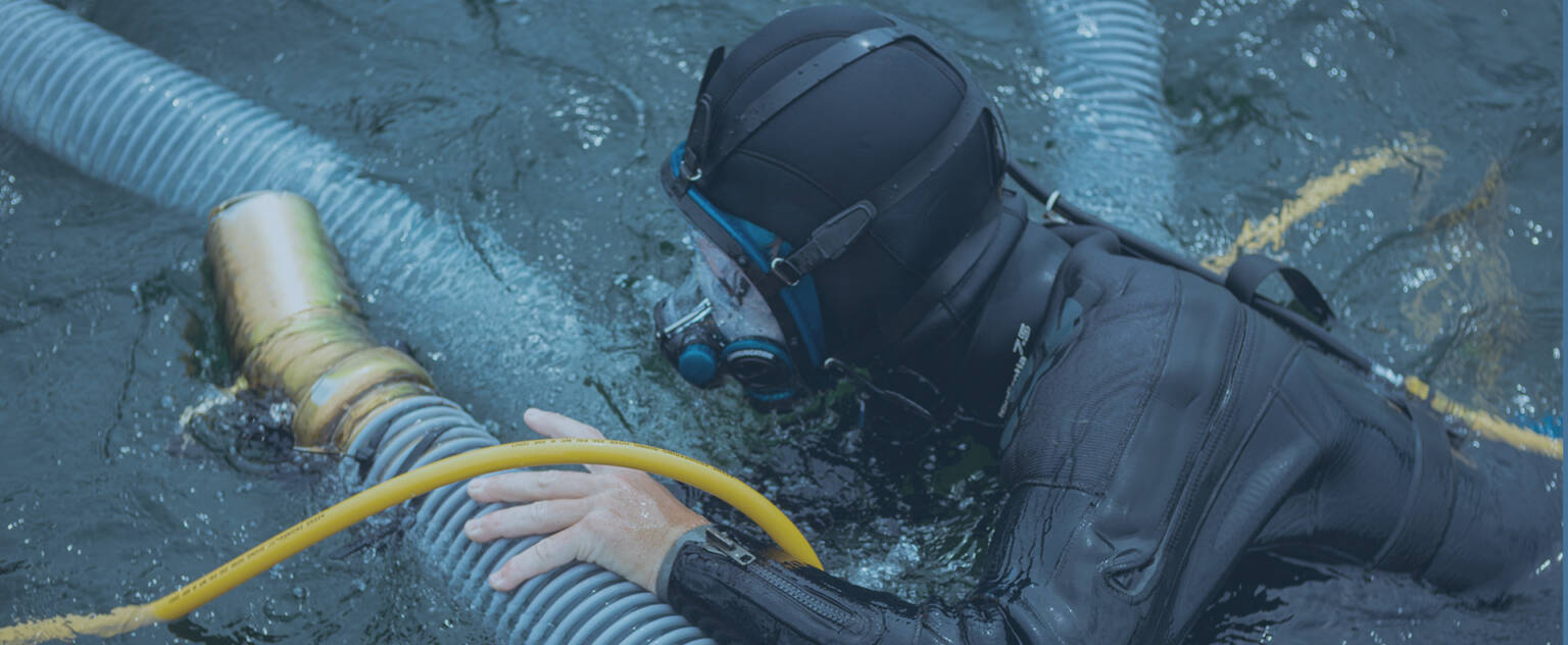 Diver Assisted Suction Harvesting